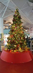 2019クリスマスイルミネーション~セントレア~🎄